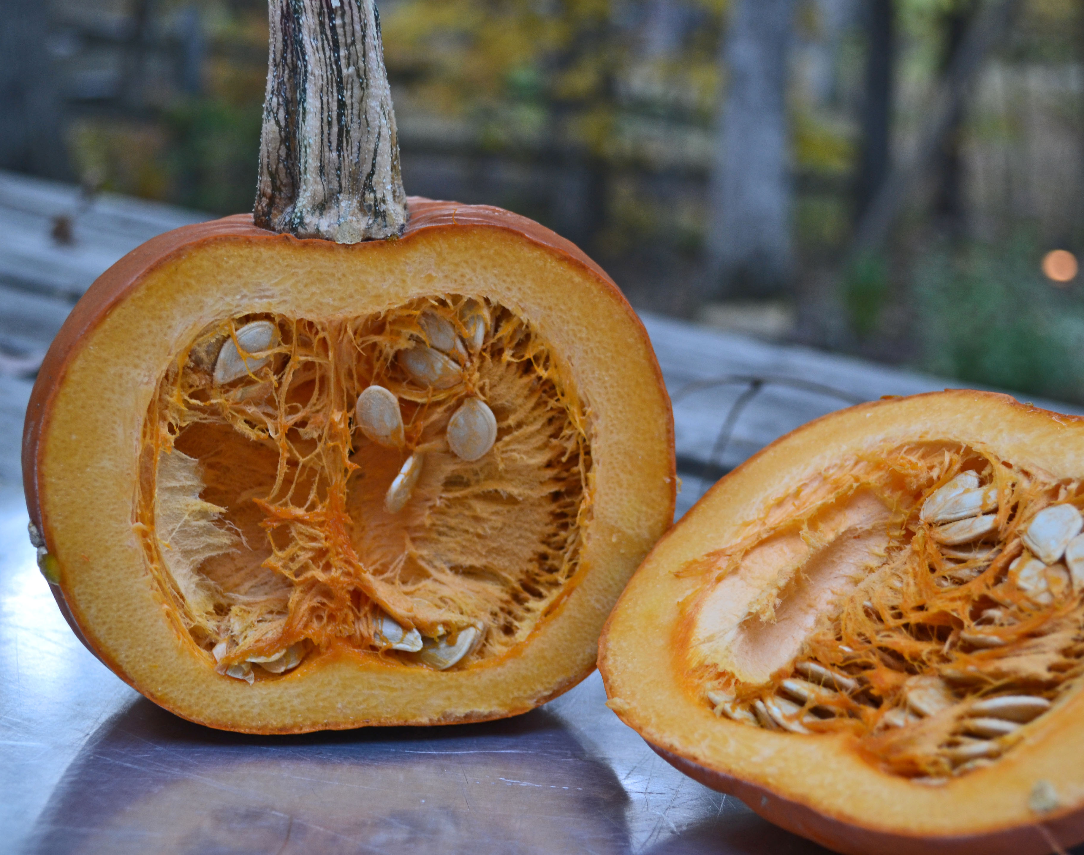 Four things you can do with leftover pumpkin guts - Informing Ape